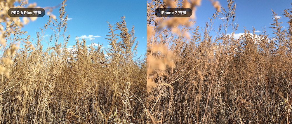 Meizu Pro 6 Plus vs iPhone 7 Kamera